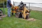 positioning the stump grinder